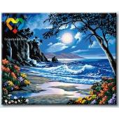 Лунное побережье (HB4050323)