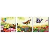 Порхание бабочек (PH340120081)