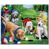 Игра в гольф (HB5060011)