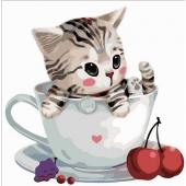 Котенок в чашке №3 (PC3030003)