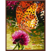 Оранжевая бабочка (PC3040014)