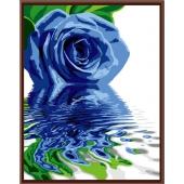 Голубая роза (PC4050040)