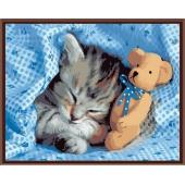 Сладкий сон (PC4050066)