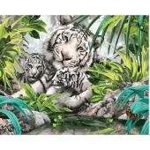 Бенгальские тигры (PC4050100)
